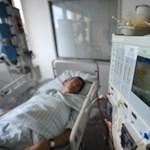 Hasmenésjárvány: sokan életük végéig művesekezelésre szorulnak