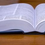Újabb remek alkalmazás, amivel játszva tanulhattok nyelveket
