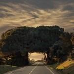 A nap képe: Falagút Portugáliában