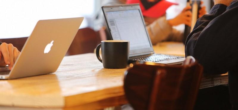 Így lehet online tanulni a főiskolán, egyetemen: kurzusajánló
