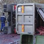 Förtelmes bűz maradhatott a Kecskemétnél felborult kamion után – fotók 18+