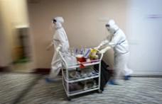 December elejére javulhat a járványhelyzet Szerbiában