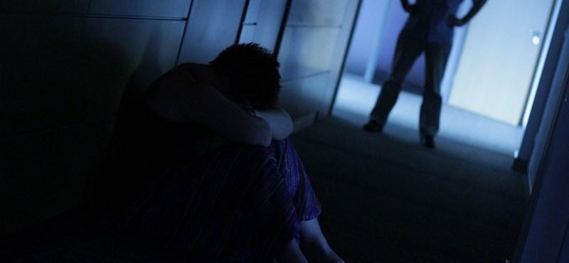 A Fidesz-KDNP-t a jelek szerint nem érdekli a családon belüli erőszak