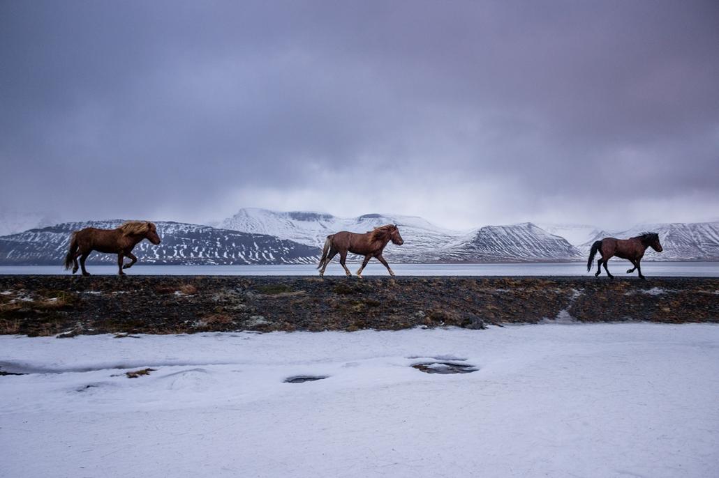NE HASZNÁLD!!! Darab Zsuzsa izlandi képek