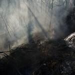 Sikerült megfékezni a hatalmas tüzet Kunhegyesnél