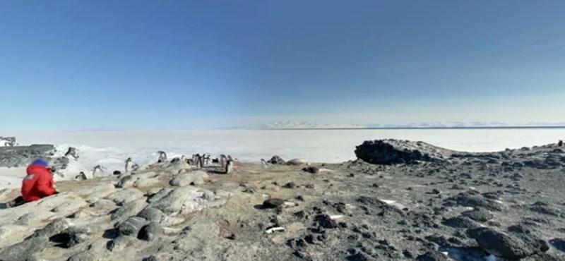 Fantasztikus: tegyen látogatást az Antarktiszon!